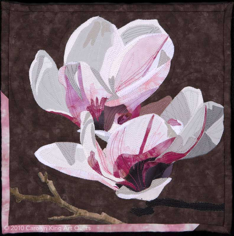 Magnolia by Carolyn King