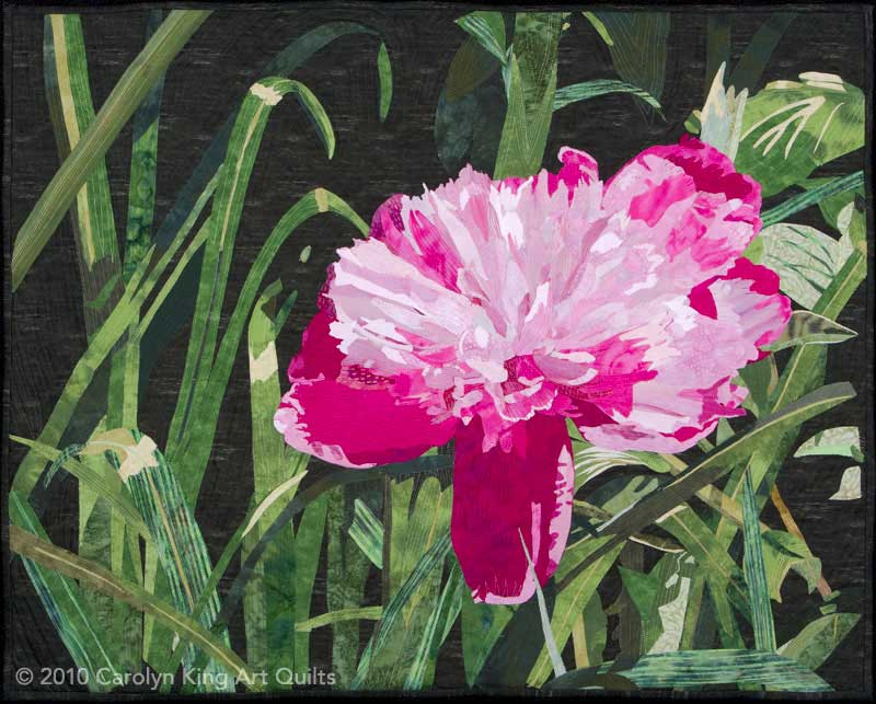 Peony by Carolyn King